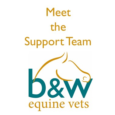 Meet the B&W Equine Vets Support Team