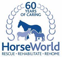 Image result for horseworld