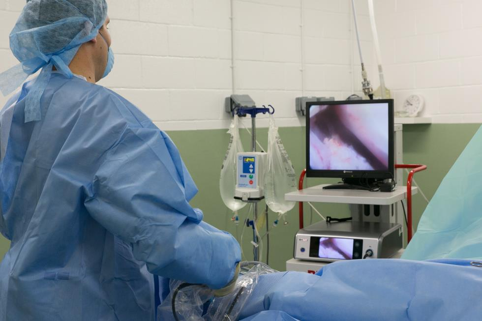 Equine orthopaedic surgery