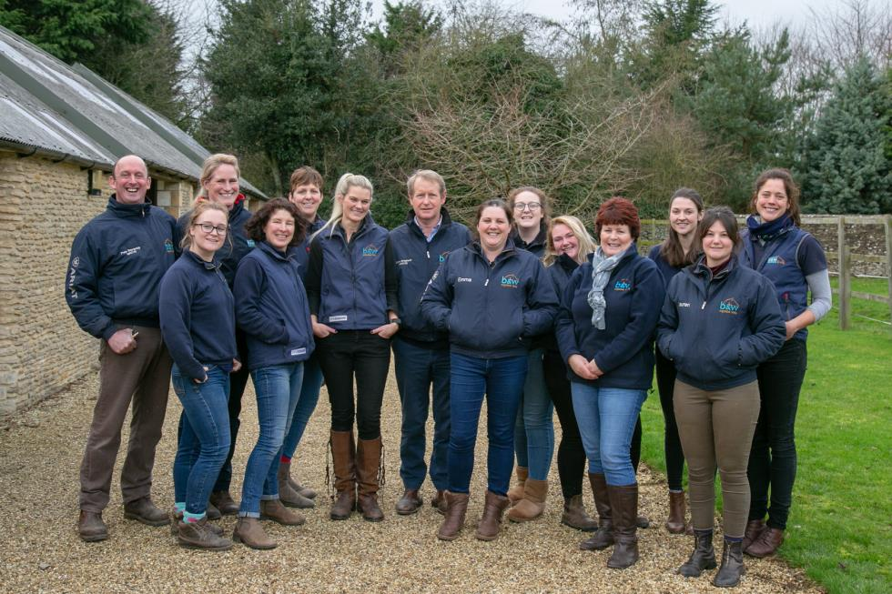 Equine Vets Willesley